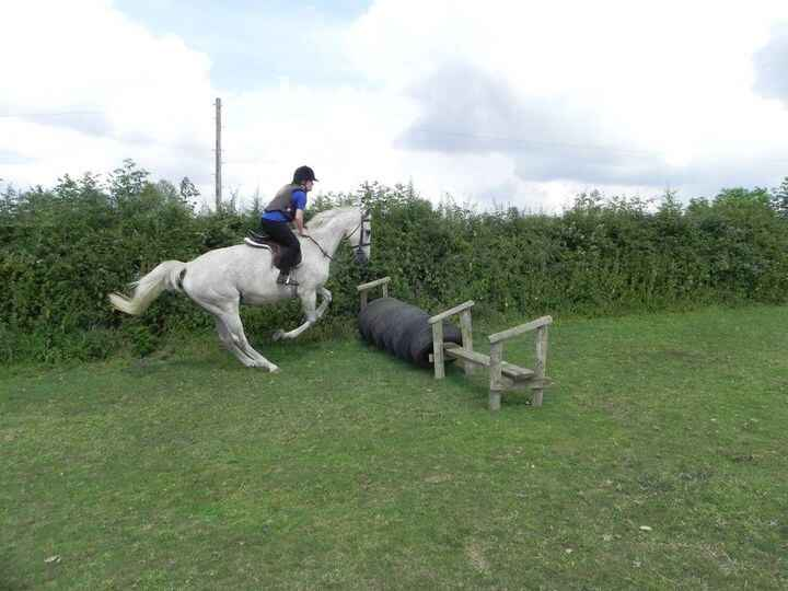 Cross country at Teamwork Equestrian